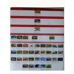 Cartelón clasificación vertebrados completo euskera