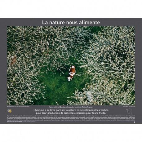 Argazkiak: naturak elikatzen gaitu eta besteak