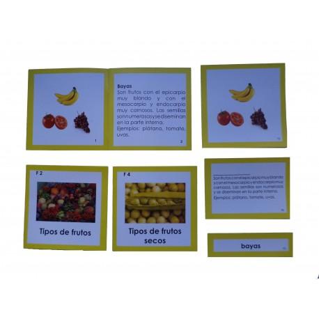 Nomenclatura botánica 6: FRUTO